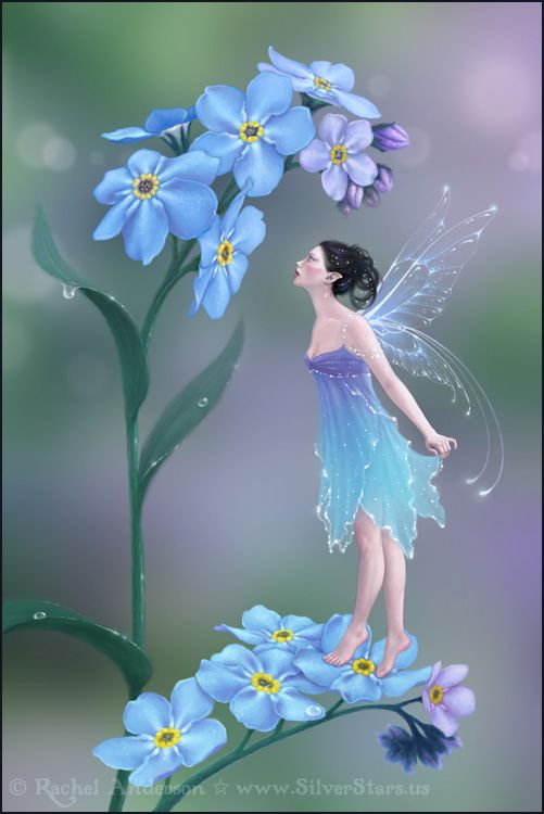 ♡ Forget Me Not Flower Fairy                                                                                                                                                     More