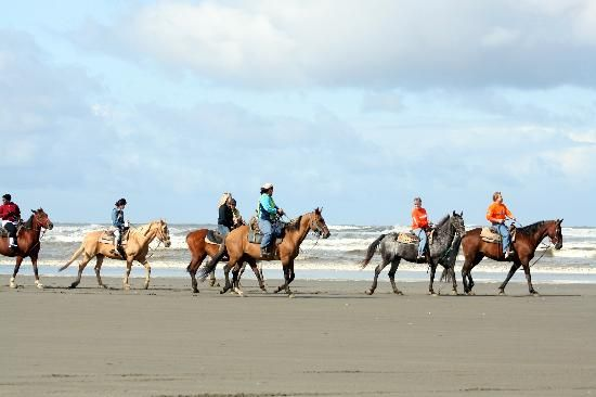Horseback riding on the beach in Ocean Shores. You can drive on it too!