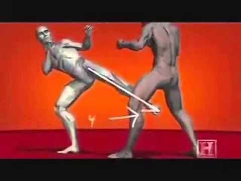 HUMAN WEAPON KRAV MAGA TECHNIQUES - YouTube