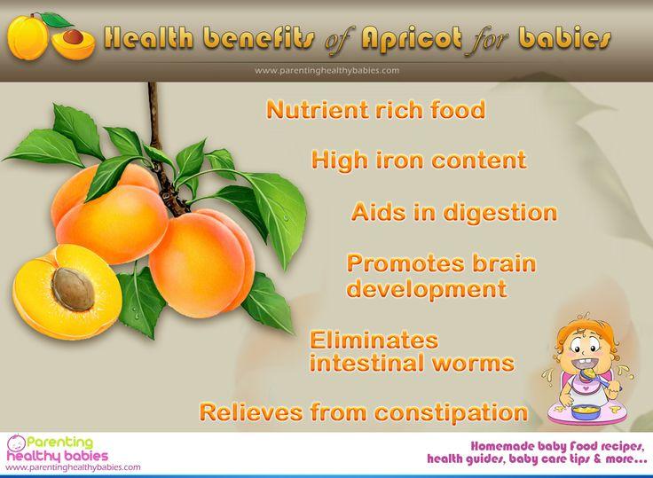 Benefits of apricot kernels