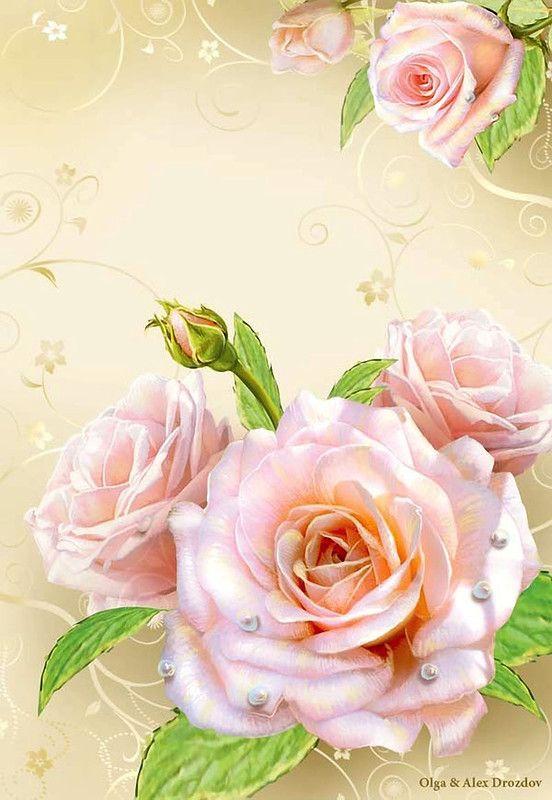 День, картинки розы на открытку