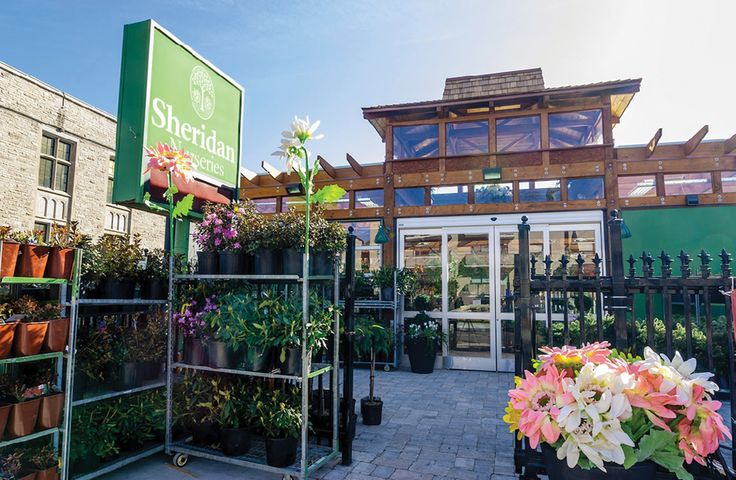Committed to quality  Features - THE TOP 100   No. 6 Sheridan Nurseries  More than a century of growing knowledge breeds success for Sheridan Nurseries' trialing efforts and retail interactions.