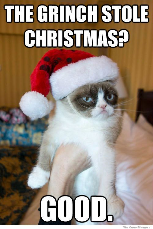 Best 25+ Grumpy cat christmas ideas on Pinterest | Grumpy cat ...