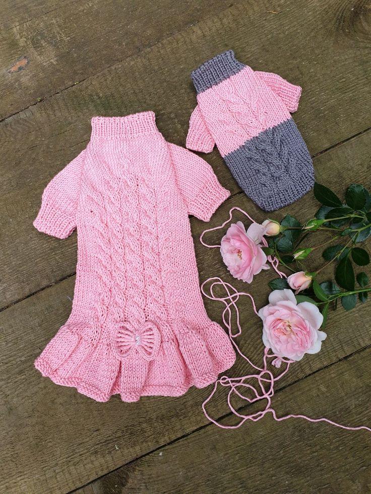 мод на одежду и питомцев