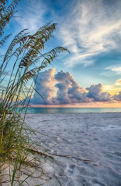 So pretty - Naples, FL is getting put on the list for this year too!!! ahhhhhh :) find some more sand dollars with my toes in the gulf!