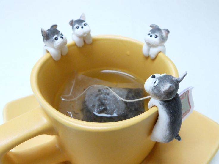 Schnauzer Tea Bag Holder - Clinging Dog Tea bag Holders - Dog Lovers Gifts - Funny Cup Decor - Mug Decor - Bowl Decor - Tea Lovers Gifts by MiniHandsCrafts on Etsy