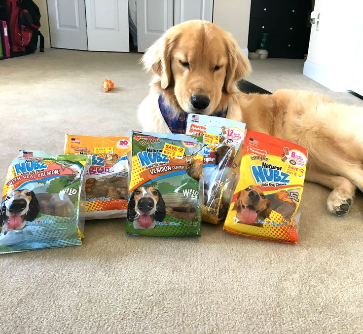 Walmart Toys Puppy : Best dog sweepstakes contests coupons and promotions