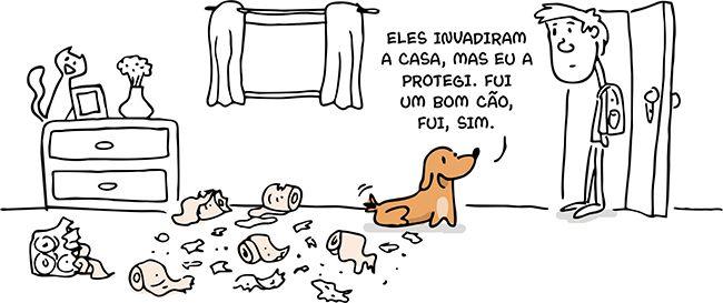 Cães e Gatos – Invasores