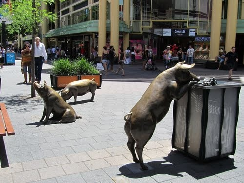 The Famous Rundle Mall Pigs! Everyone Has a Photo With These Guys!