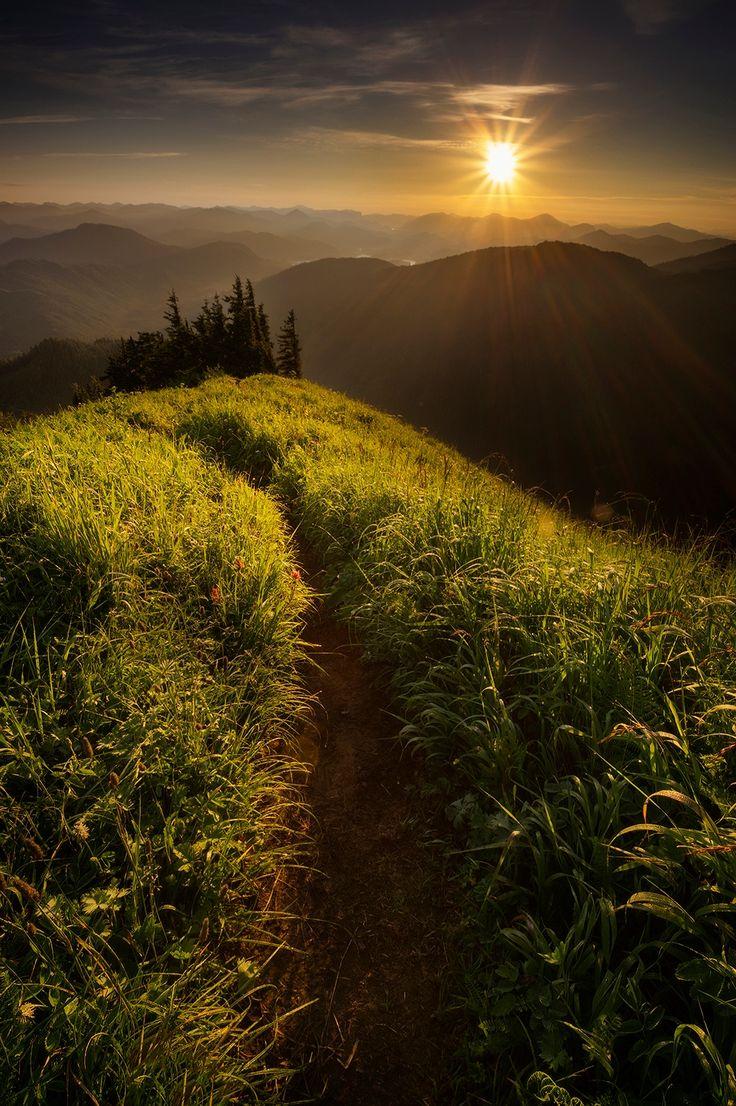 The Path ! - Alaska