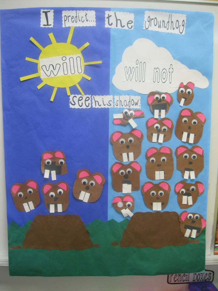 february bulletin board!!! groundhog graph