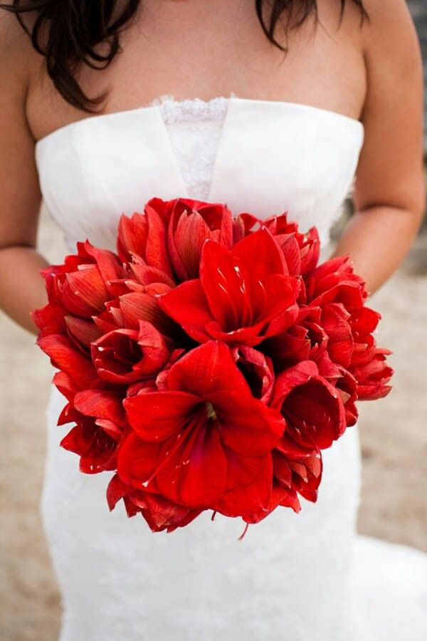 All Red Amaryllis Bridal Bouquet~~