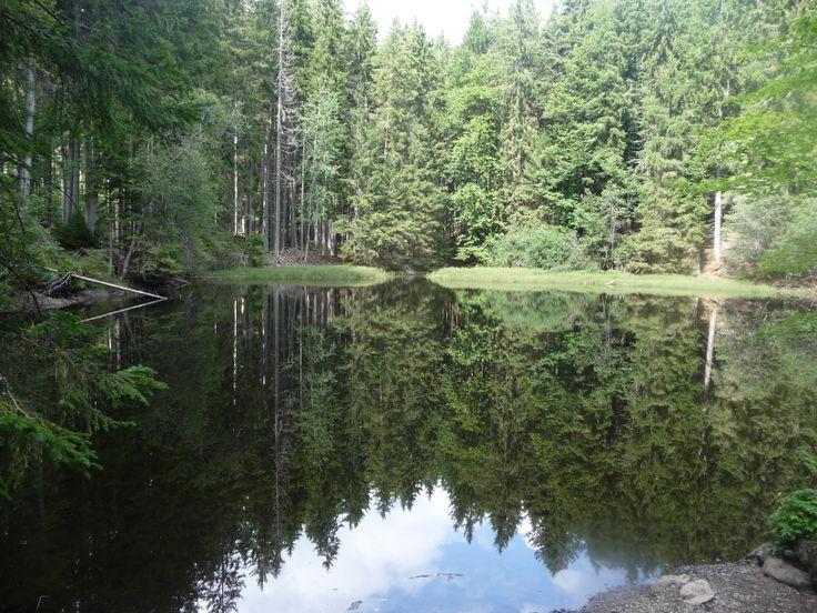 Sumava National Park, Tsjechië