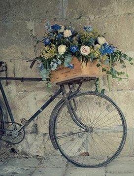 ❧ Bikes - Vélos ❧