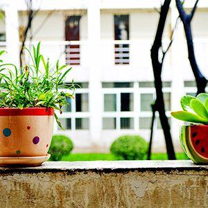 Garder #Appartement 1 chambre 25680 #Cuse-et-Adrisans