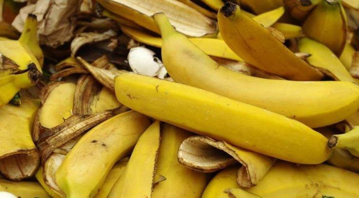Receita de chá de banana para turbinar a floração | Maryjuana