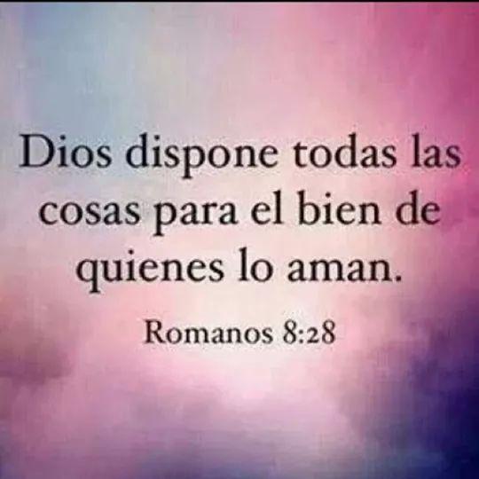 Versiculos De La Biblia De Fe: 17 Best Images About Biblia On Pinterest