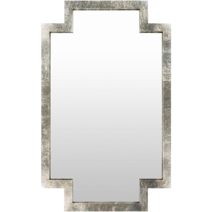 Drusus 40 in. x 65 in. Contemporary Framed Mirror