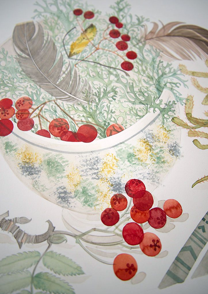 """Angie Lewin """"Cromarty Bowl and Spey Lichen"""" watercolour (detail) http://www.angielewin.co.uk/products/cromarty-bowl-spey-lichen"""