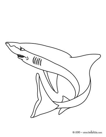 shark picture coloring page nice coloring sheet of sea world more content on hellokids