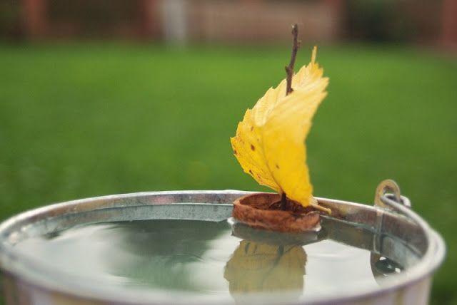 walnut shell boat with leaf sail
