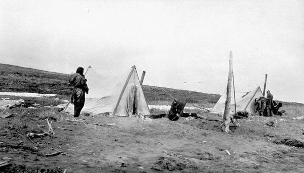 """""""Alpine"""" tents (R.M. Andersons' model) made by members of the Southern Party, west of the mouth of the Coppermine River, Coronation Gulf, Northwest Territories [Nunavut] / Tentes « Alpine » confectionnées par les membres de l'équipe sud (à partir du modèl   by BiblioArchives / LibraryArchives"""