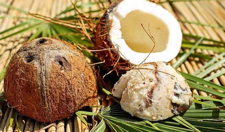 ¿Quieres cuidar los labios secos y nutrirlos al máximo usando ingredientes económicos y naturales? ¡Prueba este truco de belleza casero de aceite de coco!