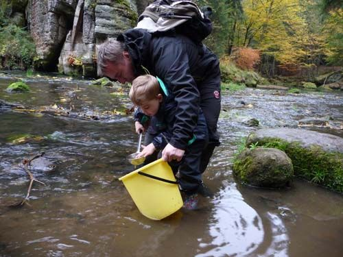 Adoptivní rodiče vypouštěli lososy