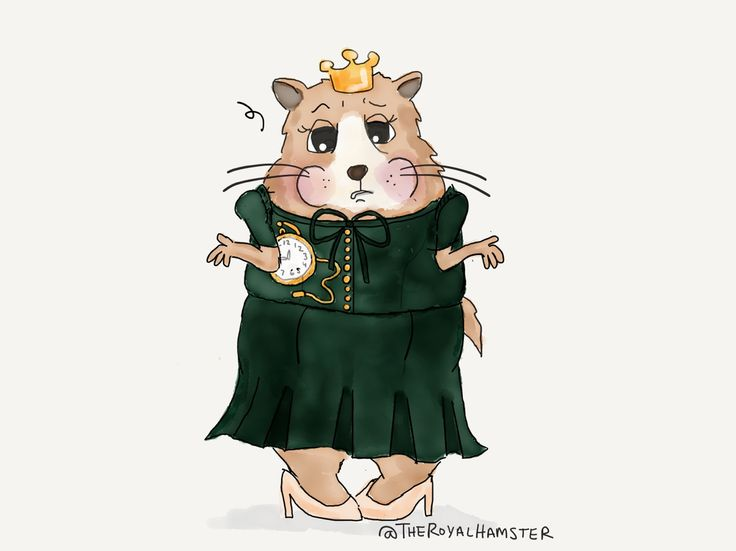 At this point, it doesn't really matter whether #TheRoyalHamster didn't get the memo, or was forced to buy off the rack… #RoyalVisitCanada