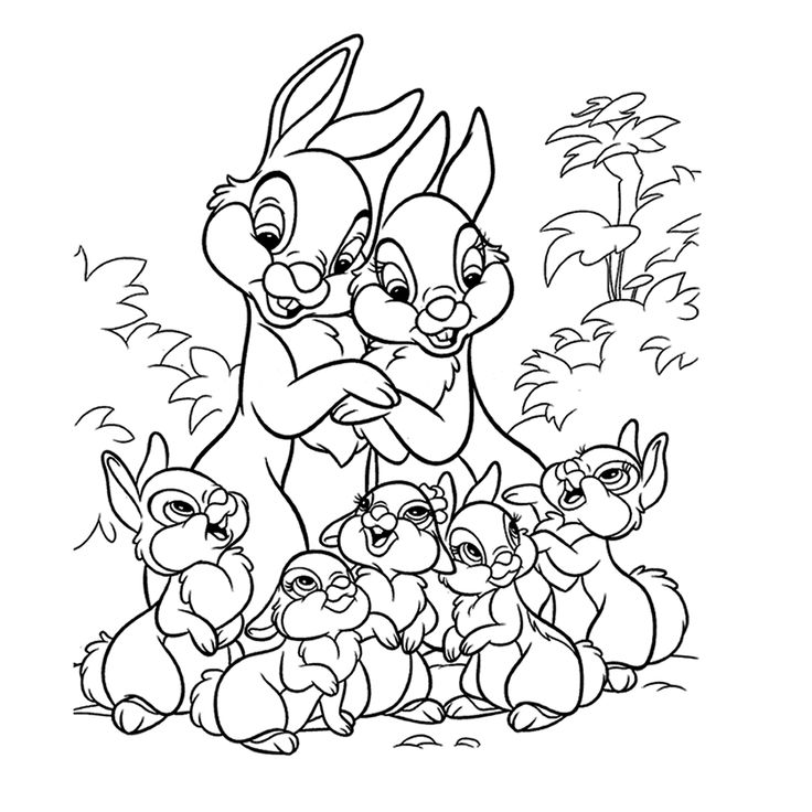 bunnies coloring page 64 is a coloring page from bunnies coloring booklet your children express their imagination when they color the bunnies coloring page