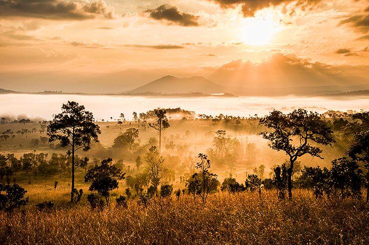 Nationalparken Serengeti #tanzania #serengeti #nationalpark #travel #resa #semester