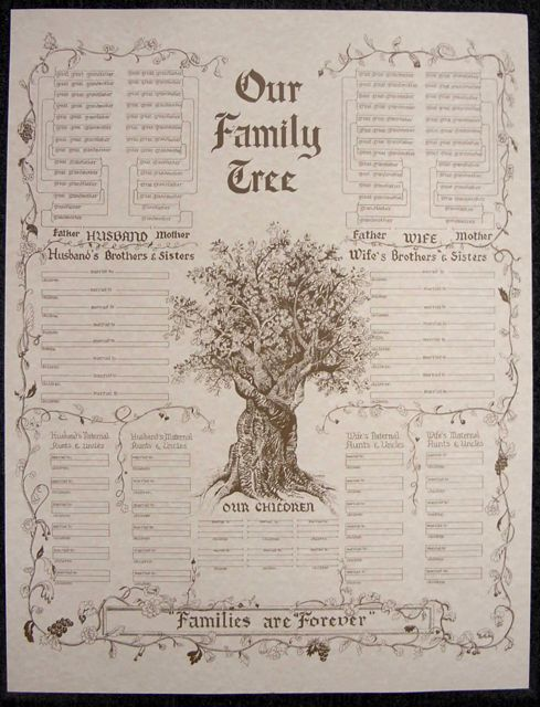 family tree chart  large parchment