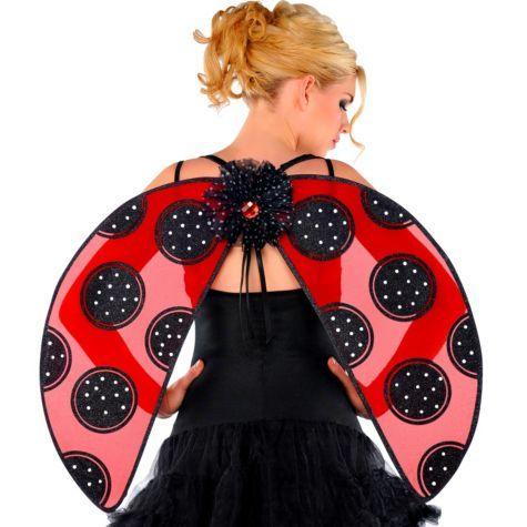 9 best Ladybug party images on Pinterest Ladybugs Ladybug party
