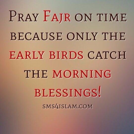 Early Morning Blessing Quotes: 29 Best Islamic Quotes Images On Pinterest