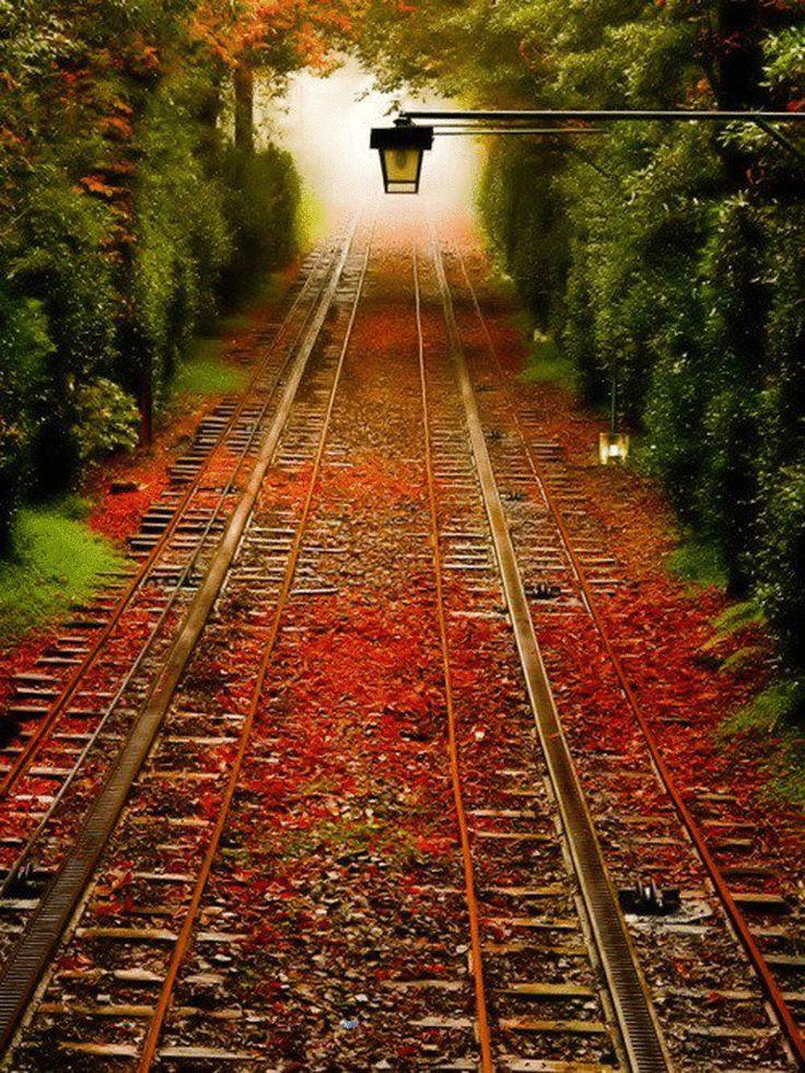 Outdoor Patio Rugs train track beautiful Hledat Googlem
