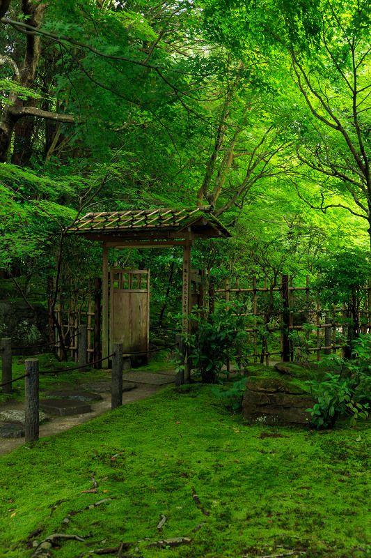 Nanzen-ji Temple,Kyoto
