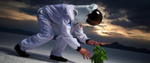 Элон Маск ищет фермера, не страдающего клаустрофобией - http://supreme2.ru/6397-elon-mask-ishhet-fermera/
