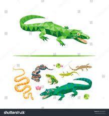 """Résultat de recherche d'images pour """"drawing crocodile flat color"""""""