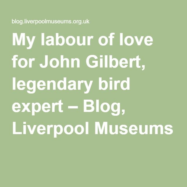 My labour of love for John Gilbert, legendary bird expert – Blog, Liverpool Museums