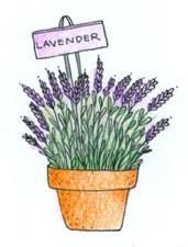 PINK INK: Patio Lavender (wood mounted) This adorable wood mounted, potted lavender stamp is great for card making. Wood mounted stamp measures approximately 2