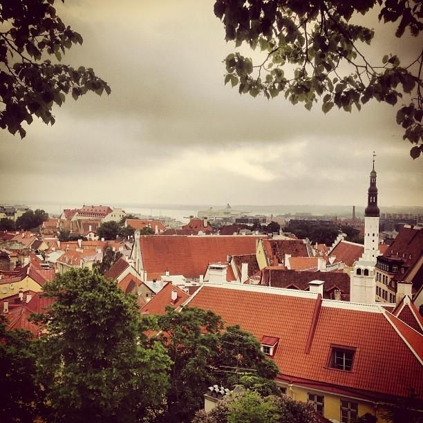 Romantic view over Tallinn