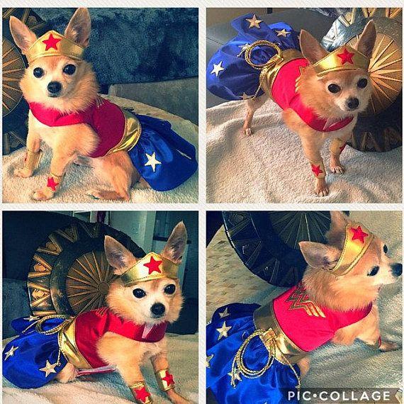 Wonder Woman Dog Costume Dog Costume Dog Clothes Patterns Dog Clothes
