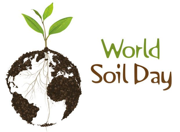ΡΟΔΟΣυλλέκτης: Παγκόσμια Ημέρα Εδάφους