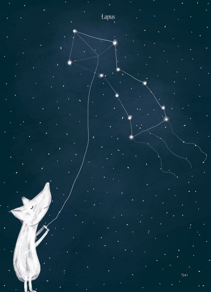 """""""Arctic Constellations"""" - Lapus"""