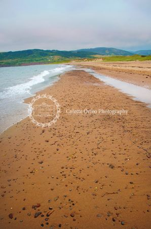 Sandy Beach Photography Backdrop. The sandy shores at Inverness Beach, Inverness, NS. To order backdrop visit www.backdropscanada.ca