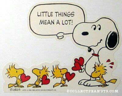 Snoopy and Woodstocks