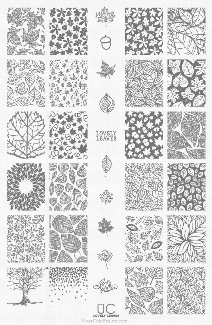 Lovely Leaves - UberChic Nail Stamp Plates.  Thinking these will make beautiful nail decals for fall.
