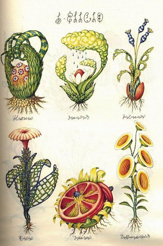 Pakou Pakou - Le Codex Seraphinianus