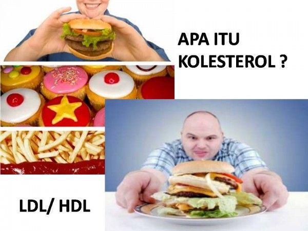 Obat Kolesterol Tinggi >> Penyakit Kolesterol Tinggi memang sudah banyak penderita nya, penyakit ini bisa mencapai 80% orang di indonesia, kolesterol memang sangat di butuhkan oleh tubuh, namun jika kolesterol itu naik, berbahaya juga bagi tubuh, bisa memicu timbul nya penyakit lain seperti stroke dan jantung.