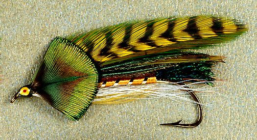 623 best feather wing streamers images on pinterest for Best trout fishing in new hampshire